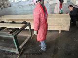 LVL van de Pijnboom Radiata van 38mm42mm Osha Bewijs Geteste voor de Plank van de Steiger