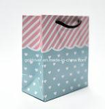 Printing exquisito Gift Bag para Promotion (BK-101)