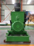 CHPの熱の湯および蒸気との産業発電機の高性能の容易な開始の生物量の電力の発電機中国Lvhuan 250kw