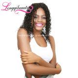 In het groot Menselijk Maagdelijk Braziliaans Kroezig Krullend Haar Afro