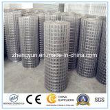 Lo zinco pesante di vendite calde ha galvanizzato il comitato saldato della rete metallica
