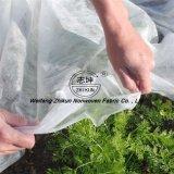 Tela no tejida vegetal de la cubierta para el invernadero