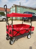 子供の三輪車のおもちゃ(F80-C)