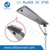 Bluesmart 80W Panel solar exterior integrado LED Street Garden luz con espinas de prevención de aves