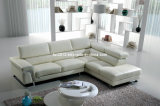 Wohnzimmer-echtes Leder-Sofa (SBO-5933)