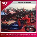 Triciclo elettrico del carico di alta qualità 800W
