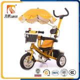 2016년 중국 고품질 세발자전거는 우산 닫집을%s 가진 강철 프레임 아이 아기 세발자전거를