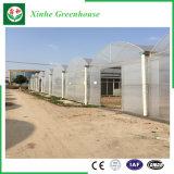 Hot-DIP galvanisiertes Plastikgewächshaus für Gemüse/Blumen