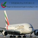 中国からのメキシコへの貨物運送業者の急使の速達便
