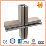 Extrusion en aluminium pour le mur rideau (ZW-DW-001)