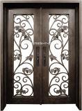 Portas superiores quadradas do ferro feito de projeto simples com vidro de Pinehead
