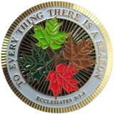 Lo smalto ha riempito la moneta d'ottone del ricordo placcata oro di bordo d'ondeggiamento speciale