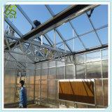 Estufa hidropónica solar tropical da eletricidade