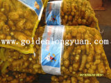 황금 공급자 신선한 생강 (150g는 올린다)