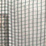 Reticolato di sicurezza della costruzione dell'HDPE, reti anti-grandine per le piante e frutta
