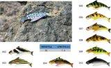 Attrait réaliste de pêche de première de pente de niveau de qualité configuration réaliste de poissons