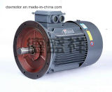 motore elettrico 0.75kw