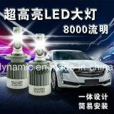 8000の内腔の穂軸LEDのドライビング・ライトLEDのヘッドライトH1 6000k