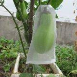 La plastica protegge il sacchetto della maglia per le verdure e la cipolla della frutta