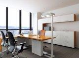 Uispair moderne Lampen-Fußboden-Lampe des Büro-10W 32V Stahlder unterseiten-LED
