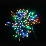 stringa artificiale dell'indicatore luminoso dell'albero di Natale di 5mm LED con la multi decorazione di colori (L200.021.00)