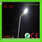 10W 태양 전지판을%s 가진 1개의 LED 태양 램프 가로등 태양 LED 램프 빛에서 태양 통합 태양 LED 가로등 전부