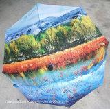 Parapluie Vihmavari de bâton de marche de Wellpii