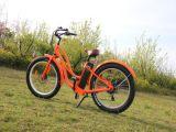판매를 위한 페달 배터리 전원을 사용하는 자전거를 가진 2017의 지방질 타이어 변환 전기 모터바이크