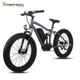 vélo électrique de MI d'entraînement de 1000W Bafang de Sysytem grosse montagne de pneu