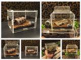 Jaula de acrílico clara del rectángulo del animal doméstico del reptil
