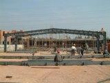 Fábrica pintada elegante da construção de aço para a vertente