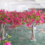 2 미터 빨간 꽃을%s 가진 인공적인 태산목 나무