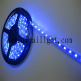 Ultrabright 2835 Flexstreifen mit 168LEDs/M