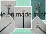 Câble de la télévision en circuit fermé Cat5e avec les fils de pouvoir (2DC), 2 twisteds pairs
