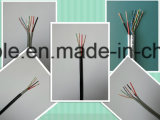 Kabel CCTV-Cat5e mit Energien-Drähten (2DC), 2 verdrehte Paare