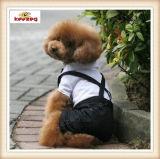 vestiti dell'animale domestico del vestito dal vestito del cane di modo