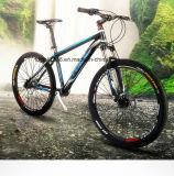 自転車かハイエンド鎖のないバイクを競争させる内部の3つの速度