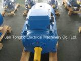 Электрический двигатель серии Y2-100L-6 1.5kw 2HP 945rpm Y2 трехфазный асинхронный