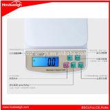 Escala de la cocina del balance de la escala de Hostweigh Digital