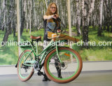250With350With500WレトロE配達自転車または配達Bike/E貨物バイクか多目的電気自転車または貨物Pedelecまたは貨物自転車または急使のバイクか明白な自転車