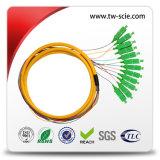 12 faisceaux, 24 cordons de connexion d'intérieur de fibre optique de faisceau avec le connecteur Sc-Sc