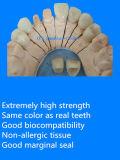 Coronas Todo-De cerámica dentales de la emperatriz hechas en el laboratorio dental de China