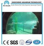 De aangepaste Transparante AcrylPrijs van het Project van de Kruik van Vissen PMMA