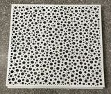Panneau perforé d'aluminium artistique