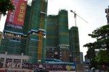構築のタワークレーン