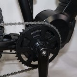 Bici de montaña eléctrica del BTN 26inch con la suspensión