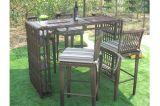Tableau Furniture-42 extérieur de barre de rotin de loisirs