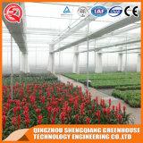 Groenten / Garden / Flowers / Farm Film Greenhouses