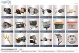 Motor, Controlemechanisme, Lader, Delen van het Toestel van de AchterAs, Gaspedaal, batterij, VoorGlas, LEIDENE Lichte, HoofdLamp, Schokbreker, Ketting, Tand, Vliegwiel, Dragende Vervangstukken