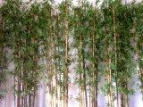 인공적인 대나무 플랜트
